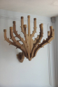 A pair of twelve branch carved walnut wall candelarbra - picture 3